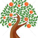L' oranger