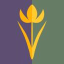 KingdomOfIsolation Logo