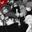 The Anime Server