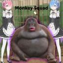 monkey squad