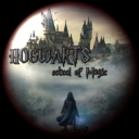 Hogwarts School Of Witchcraft & Wizardry Icon