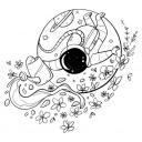 ༺ Lemniscata ༻