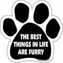 Ivory's furry community