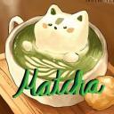 🍵 抹茶 • matcha 🍵