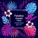 HawaiiSala Logo