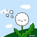 Dandelion SMP