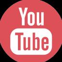 DTSELITE Logo