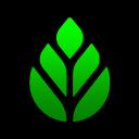 eden-official Logo
