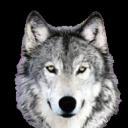 greywolf Logo