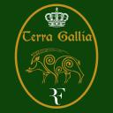 Terra_Gallia Logo