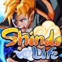 Akiyama (Серверо по Shindo Life)